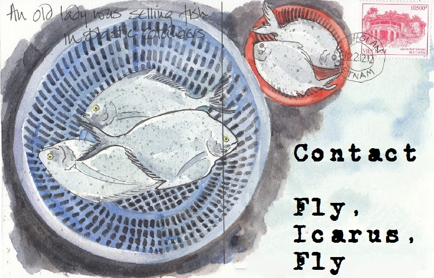 Contact Fly Icarus Fly