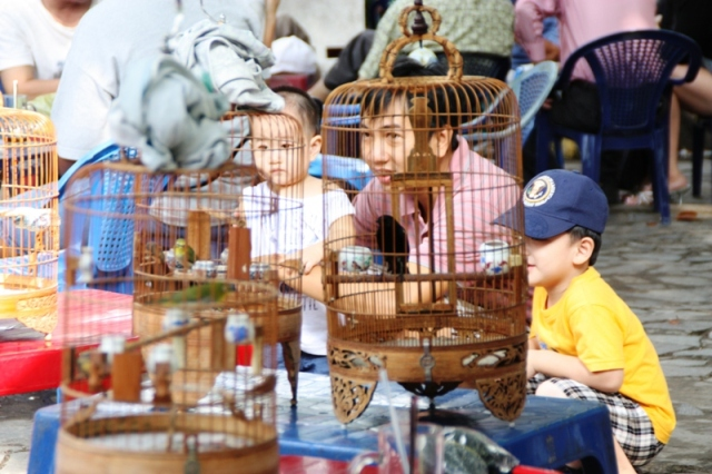 Birdmen of HCMC - Kids admiring birds - JP