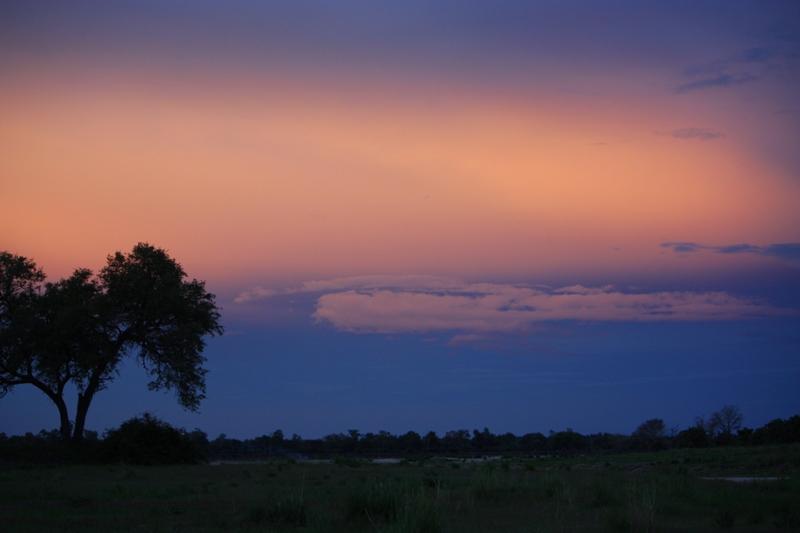 091227 Luangwa Sunset 2