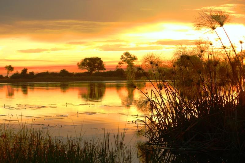 100111 Delta sunset