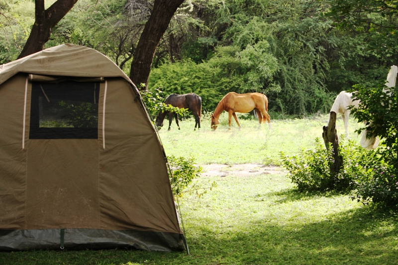 100111 Guma Camp