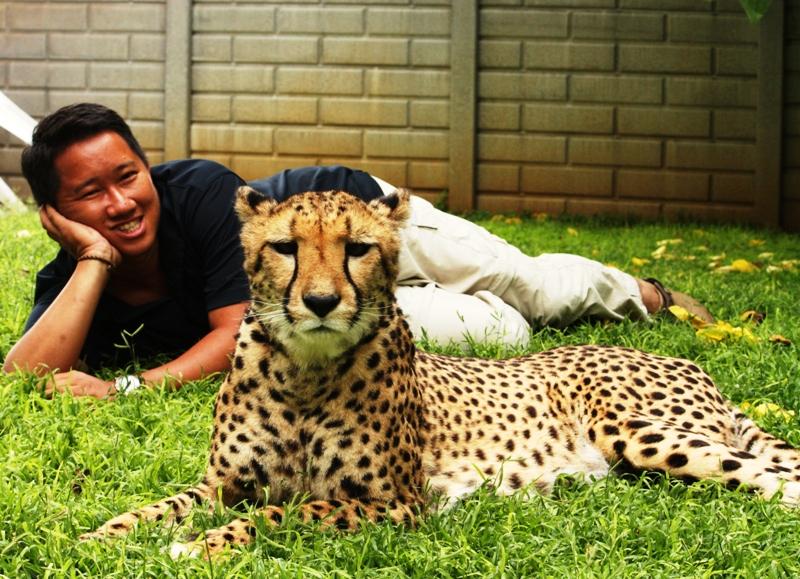 100116 Cheetah Pose 2