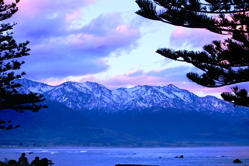 Kaikoura Purple Sky