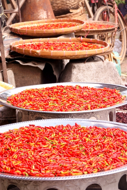 Luang Prabang-Chilis Drying