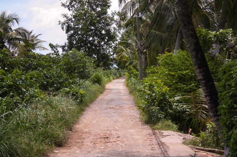 Thanh Da- Lane