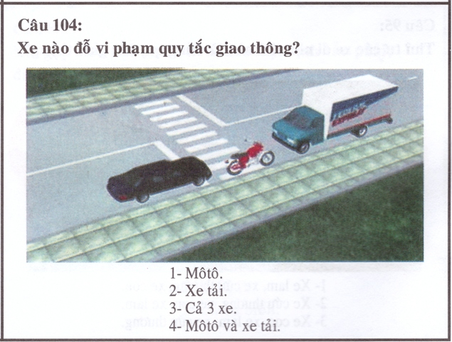 Picture in driving license booklet Vietnam