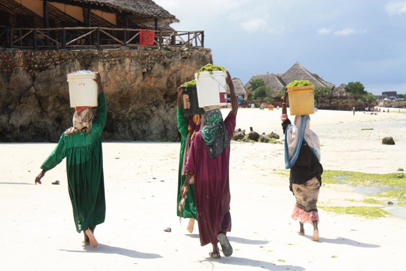 091216 Zanzibar Nungwi Women