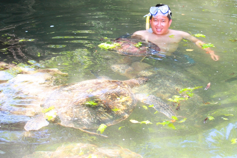091216 Zanzibar Sea Turtles