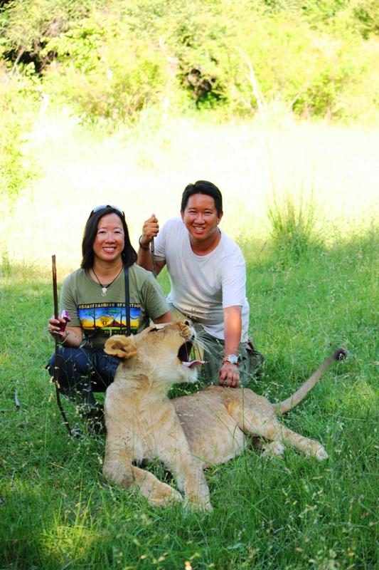 100101 Lion Walk 1