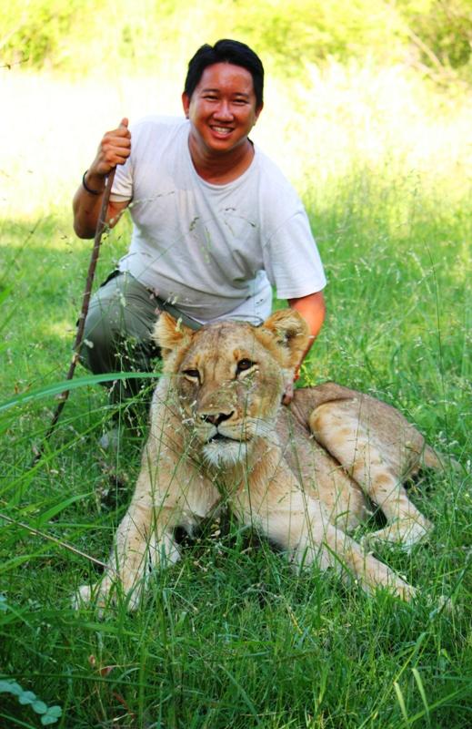 100101 Lion Walk 2