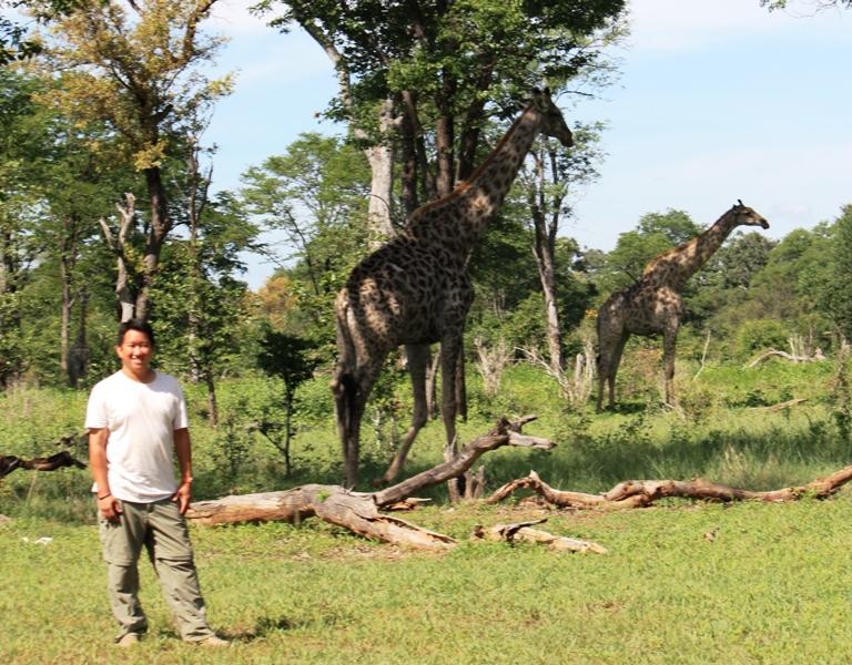 100101 Mosi Oa Tunya Giraffe