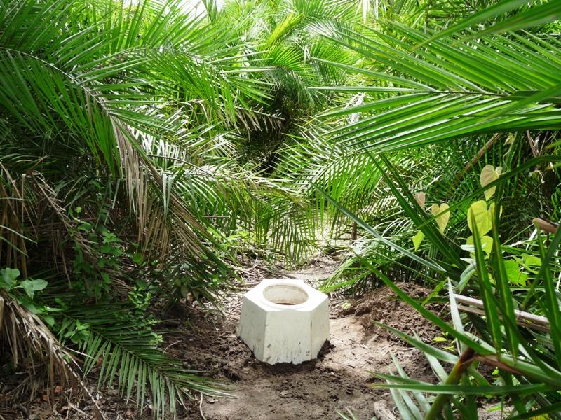 100111 Bush toilet