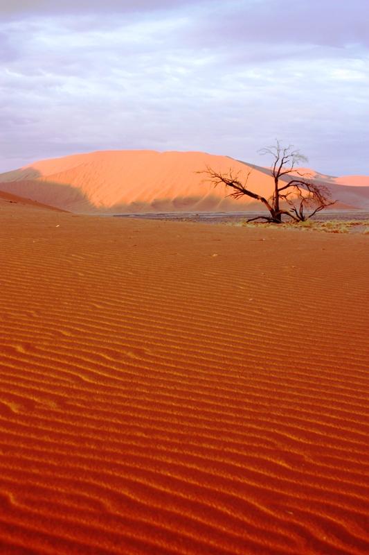100124 Sossusvlei Dunes
