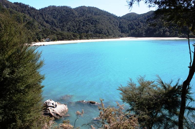 Abel Tasman Bark Bay