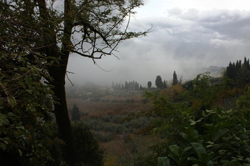 San Gimignano - Countryside