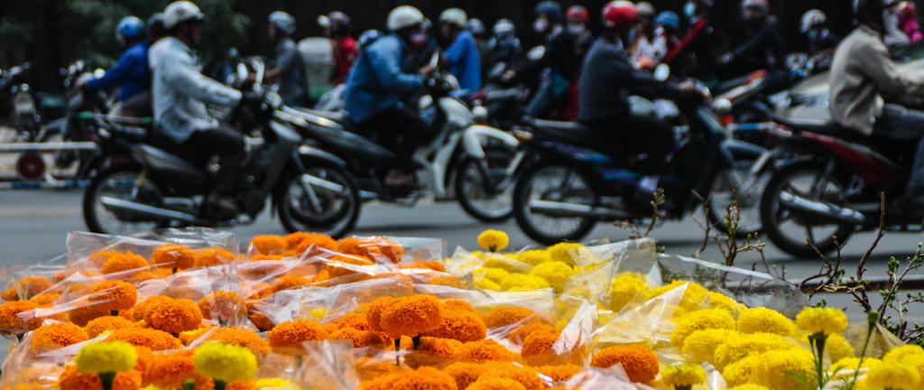 New Beginnings – Vietnam's Lunar New Year