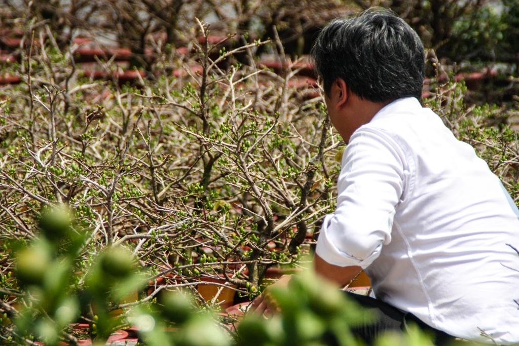 Tet Flower Market - Gia Dinh - James Pham-17