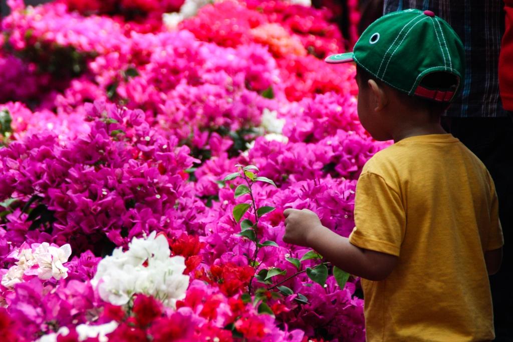 Tet Flower Market - Gia Dinh - James Pham-19