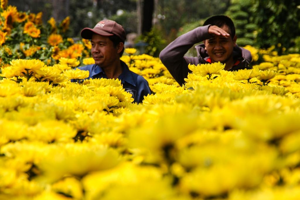 Tet Flower Market - Gia Dinh - James Pham-23