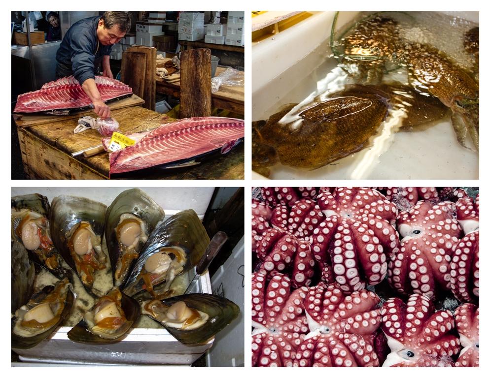 Tsukiji - Seafood - James Pham